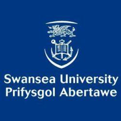 logo_swansea-ostheopathie-idheo