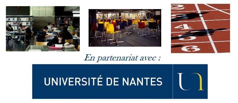 partenariat université